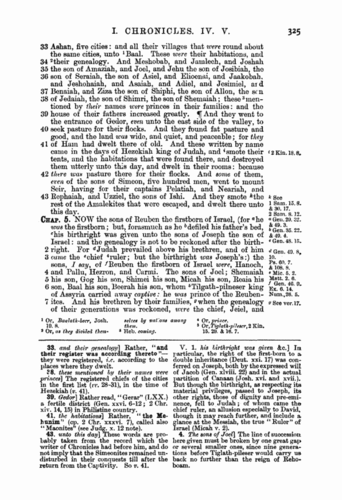 Image of page 325